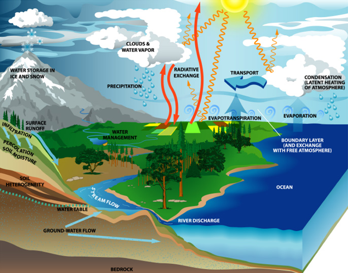 WaterCycle-optimized